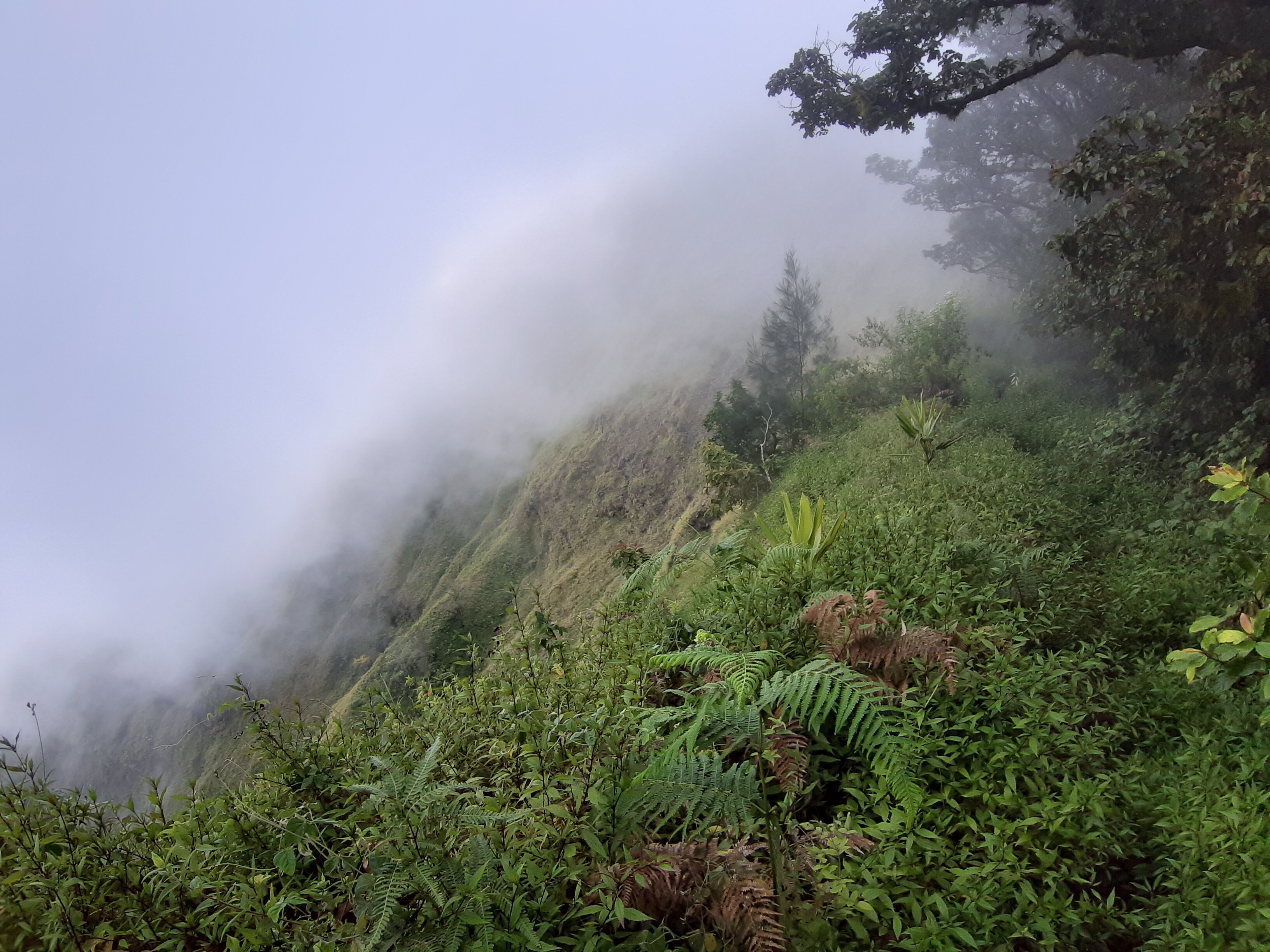 The misty and cloudy view from the mountainside.