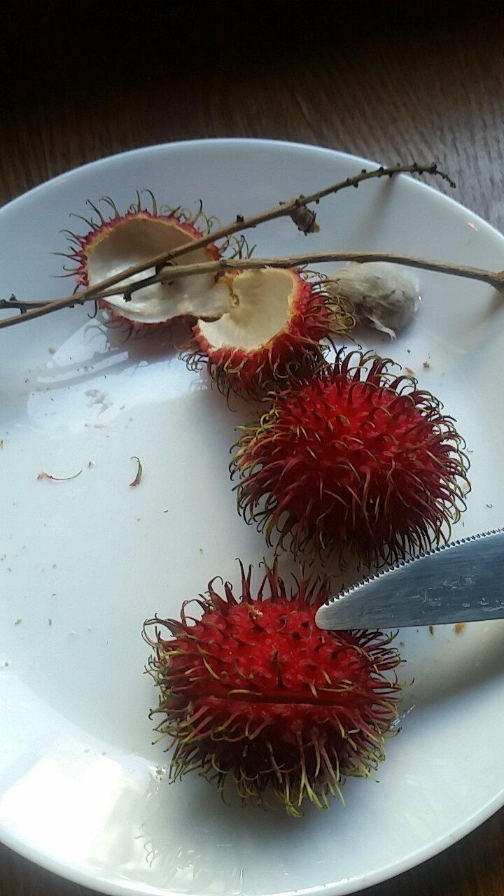 Rambutan, a lychee-like fruit native to Malaysia and Indonesia.